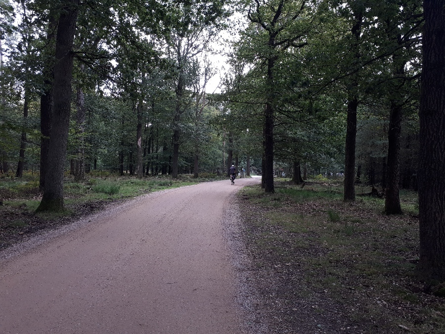 190912-20-In-de-buurt-van-Aardhuis